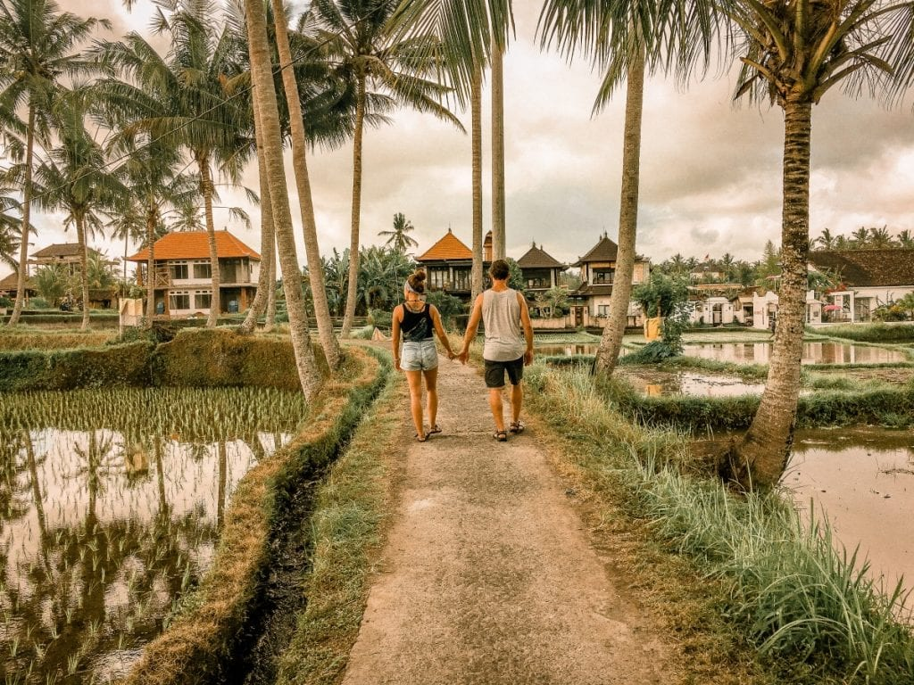 walking the rice fields of Ubud, Bali