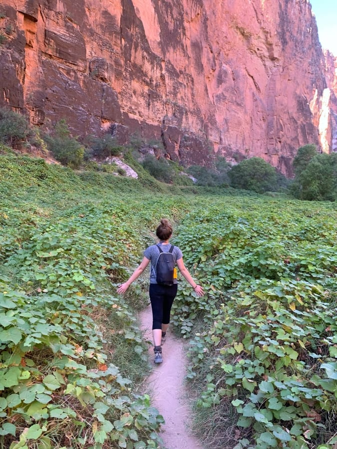 Havasupai Permits On Our Day Pack