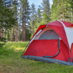 Tent Camping in Woods
