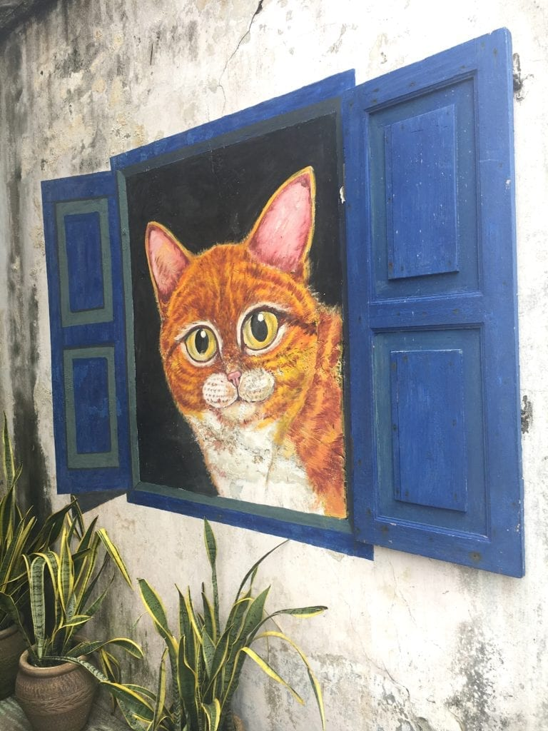 Cat in Blue Window